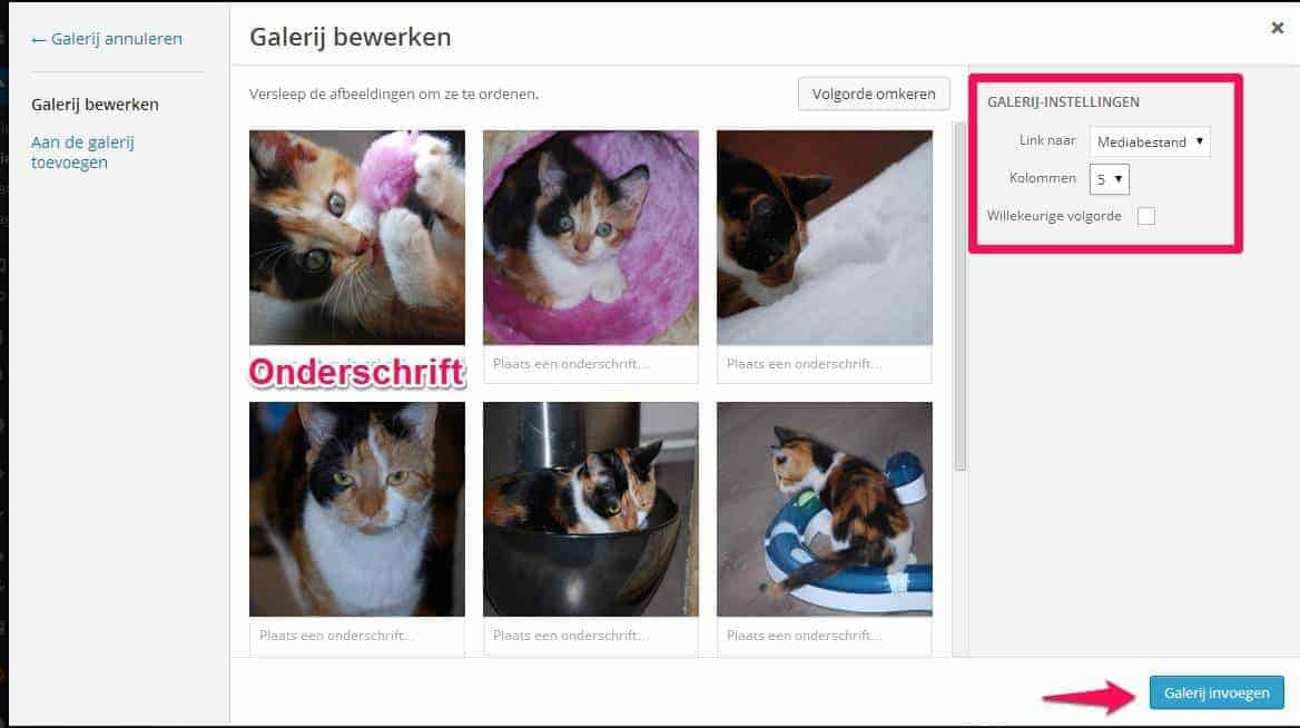 Fotogalerij WordPress website - stap 4
