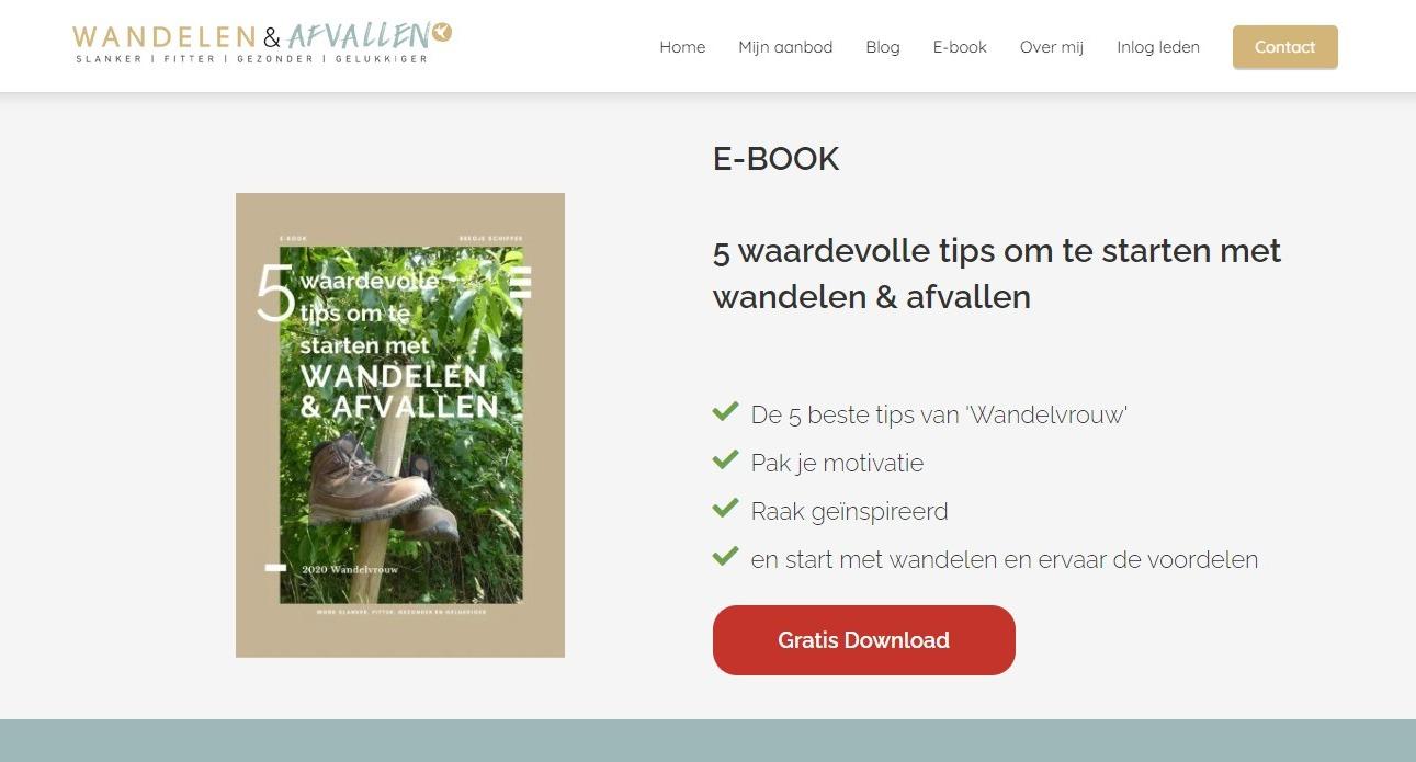 schermafbeelding van de lead magnet van wandelenenafvallen.nl